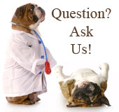 Question? Ask Us!